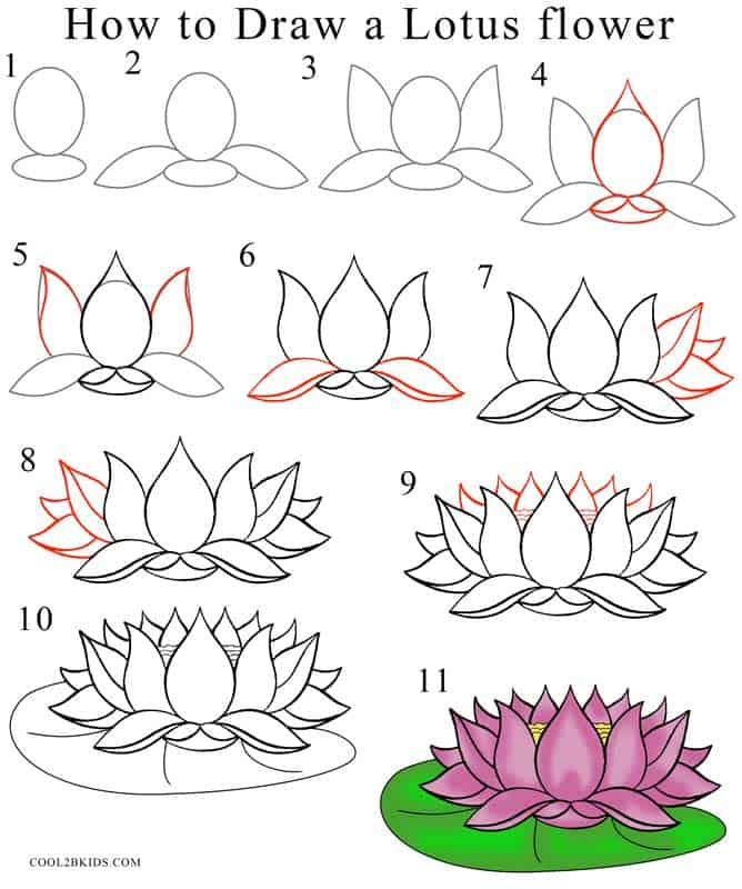 How-to-Draw-Lotus-Flower-Step-by-Step