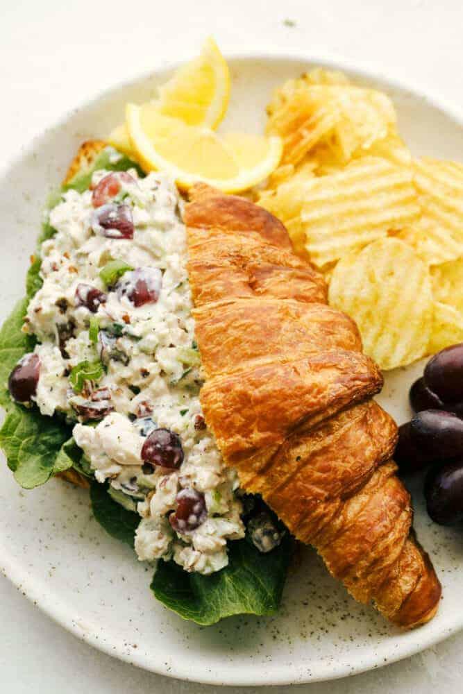 best lunch ideas for teens school chicken salad croissant