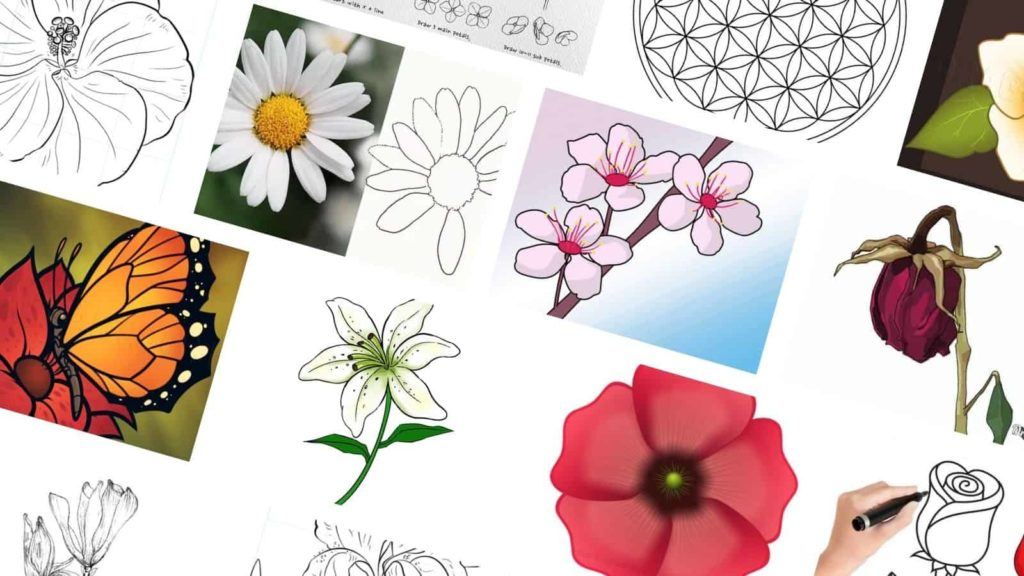 easy flower drawing tutorials