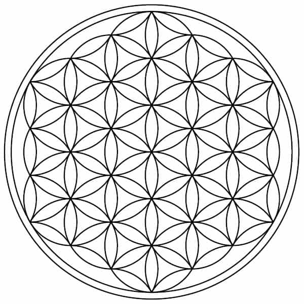 how to draw the flower of life